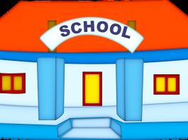 School: An Instrumental slice of Child Development