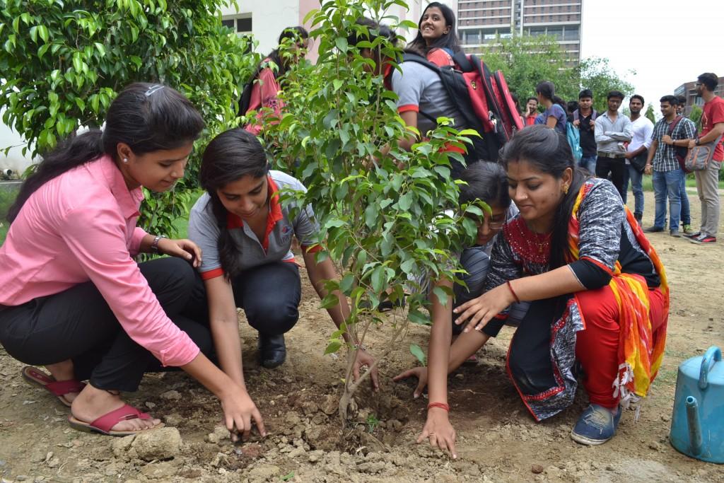 IMS, Tree Plantation, A.P.J Abdul Kalam