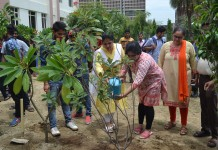 IMS, Tree Plantation, A.P.J Abdul Kalam