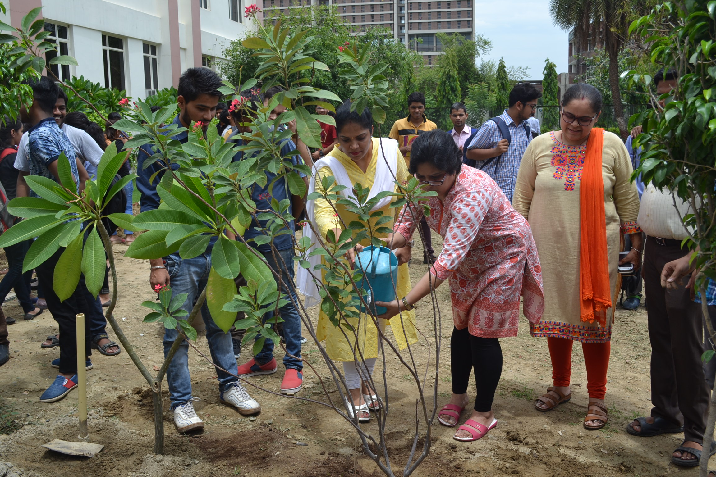 tree plantation programme Tree plantation movement tree planation is one of most ambitious initiatives of  the government of maharashtra with respect to this initiative.