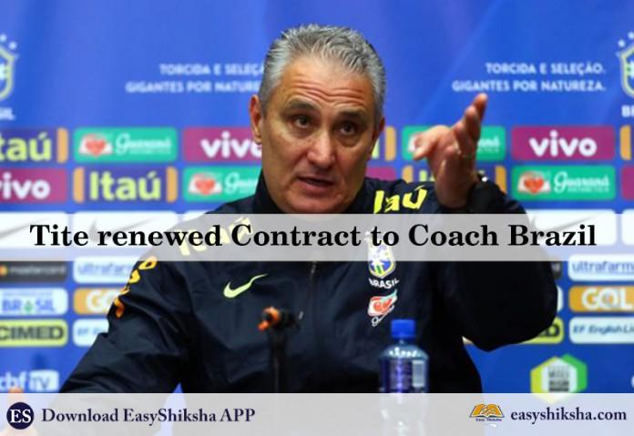 Fifa world cup 2022, brazil coach