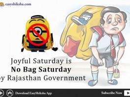 Joyful Saturday, No bags, Rajasthan