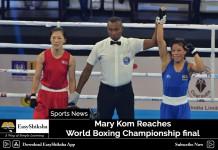 Mary Kom, World Boxing Championship