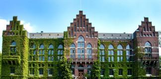 Scholarship for University
