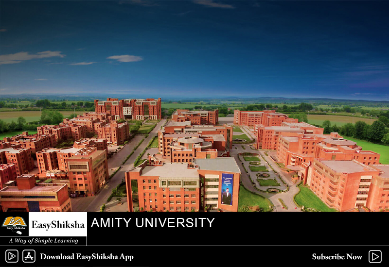 online mba program, Amity University