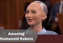 Amazing Humanoid Robots