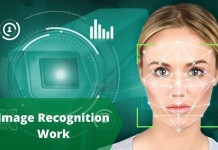 Image Recognition Work