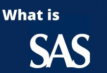 What is SAS