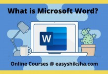 What is MS Word
