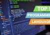 top five programming languages of the world